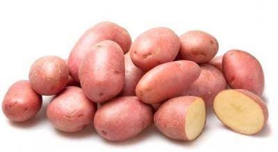 Лучшие сорта картофеля: характеристики и фото