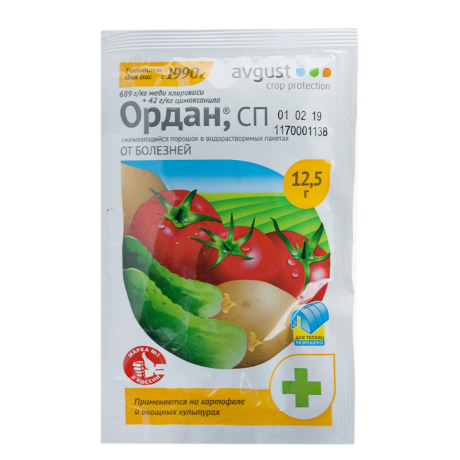 Фитофтора на помидорах: современные средства борьбы