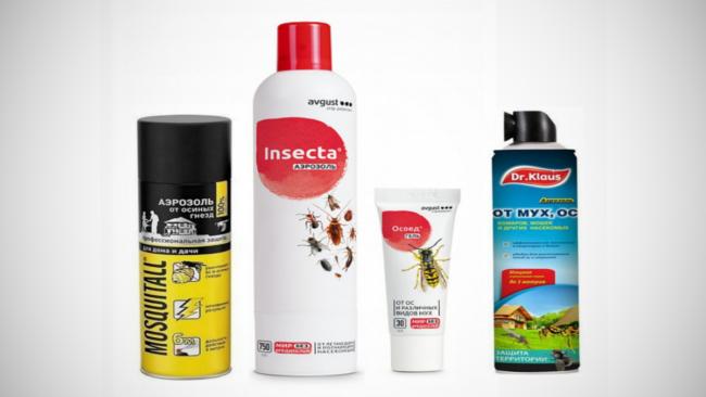 Препараты для борьбы с шершнями