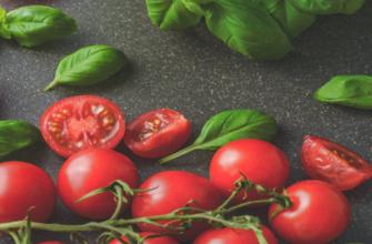 Новые сорта томатов 2021