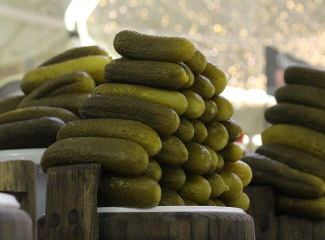 Сорта огурцов для засолки